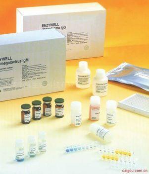 人抵抗素ELISA试剂盒