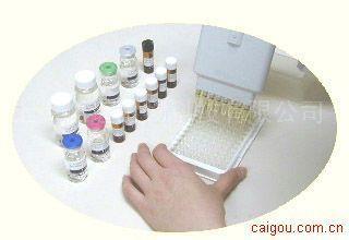 小鼠apelin 12 ELISA试剂盒