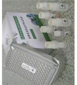 犬IL-8/CXCL8 ELISA/犬白介素8试剂盒