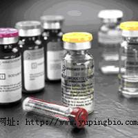 猫催乳素(PRL)ELISA试剂盒