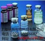 大鼠D-乳酸 ELISA试剂盒