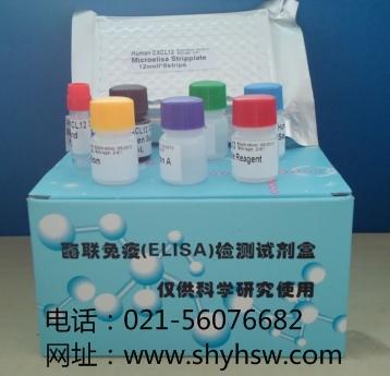 人胱天蛋白酶激活的脱氧核糖核酸酶(CAD)ELISA Kit