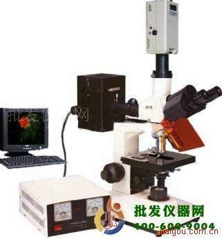 电脑荧光显微镜