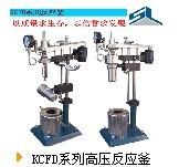 KCFD系列高压反应釜