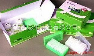 人型支原体抗体(IgG\IgM)金标测试盒