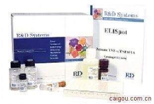 大鼠HA检测Elisa试剂盒