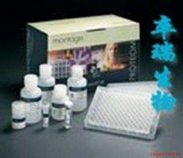 流行性乙脑抗体检测试剂盒