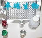 小鼠血管活性肠肽(VIP)Elisa试剂盒