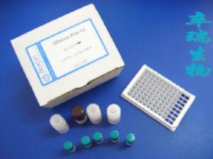 小鼠糖原磷酸化酶同工酶II(GP-II)Elisa试剂盒