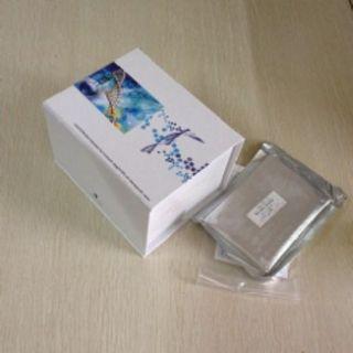 粘膜关联上皮趋化因子(MEC)检测试剂盒(酶联免疫吸附试验法)