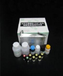 猪γ干扰素(IFN-γ)ELISA试剂盒