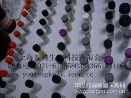 黄瓜花叶病毒(CMV)ELISA Kit