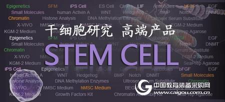 StemRD公司人重组WNT-3a蛋白和WNT-5a蛋白 高纯度高活性  现货供应