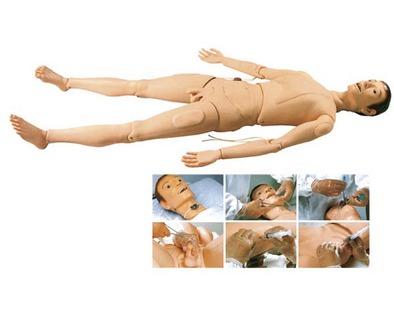 基础护理人,护理人模型