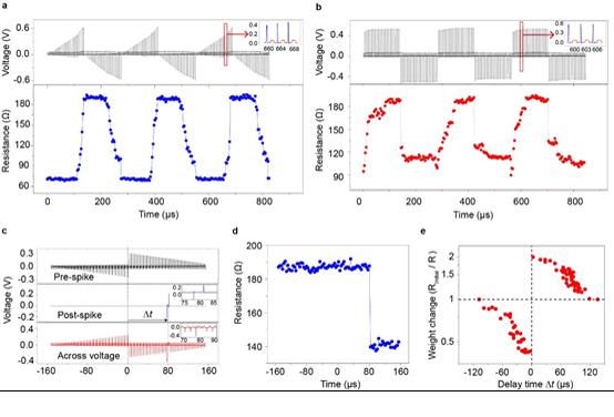 Advanced Science:多功能高分辨率磁光克爾顯微成像系統助力自旋憶阻器研究取得突破性進展