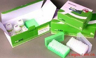 人C反应蛋白Elisa试剂盒,CRP试剂盒