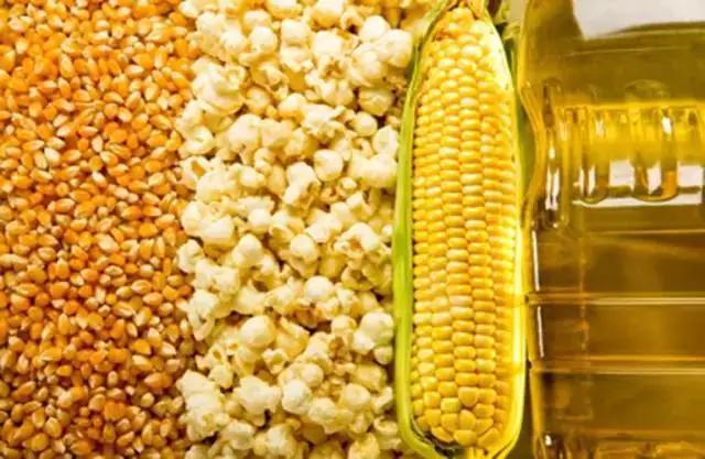 玉米油中霉菌毒素的快速定量检测方法,仅需8min准确定量