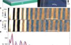 成果速递| 超高分辨散射式近场光学显微镜在超快研究领域最新应用进展