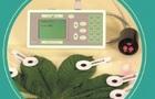 PEA應用-材料與方法中如何撰寫PEA植物部分