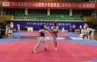 贵州省体育运动学校在跆拳道U系列比赛中喜获佳绩