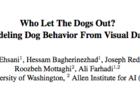 震驚!華盛頓大學研發模擬狗行為的AI系統