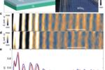成果速递  超高分辨散射式近场光学显微镜在超快研究领域最新应用进展