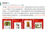 """""""新春对画·生物多样性"""",蕃茄田艺术给孩子们不一样的寒假!"""
