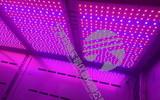宁波科晟LED红蓝光植物生长箱RHL-110-1