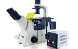 明美倒置熒光顯微鏡MF53-N