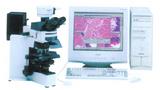 显微图像分析系统MIAS-4400