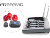 BTS FreeEMG300無線表面肌電系統
