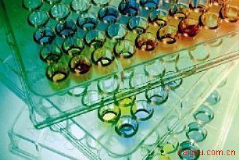 人激肽释放酶6Elisa试剂盒,KLK 6试剂盒