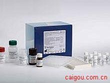 小鼠EPOR,红细胞生成素受体Elisa试剂盒