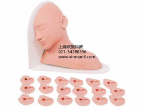高級耳部檢查模型