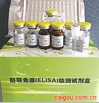 人抗磷壁酸抗体(TA)ELISA Kit