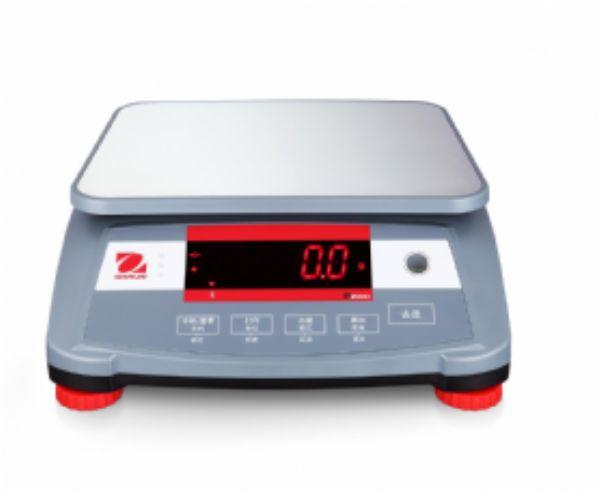 R2000便携式电子计重秤