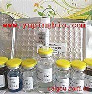 细胞角蛋白片段CyK18(TPS)ELISA试剂盒