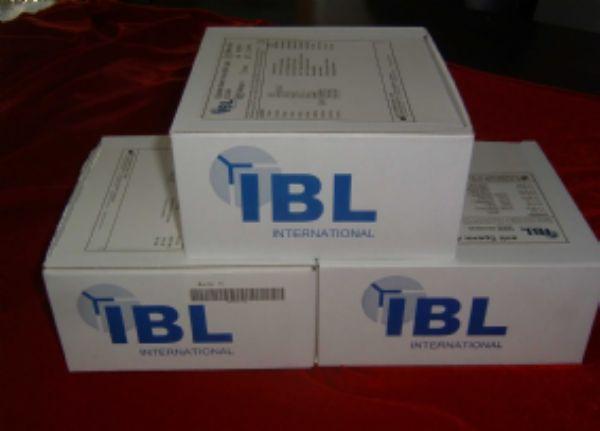 大鼠γ干扰素诱导蛋白16/p16(IFI16/p16)ELISA试剂盒
