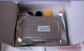 犬骨桥素(OPN)ELISA Kit=Canine Osteopontin,OPN ELISA Kit