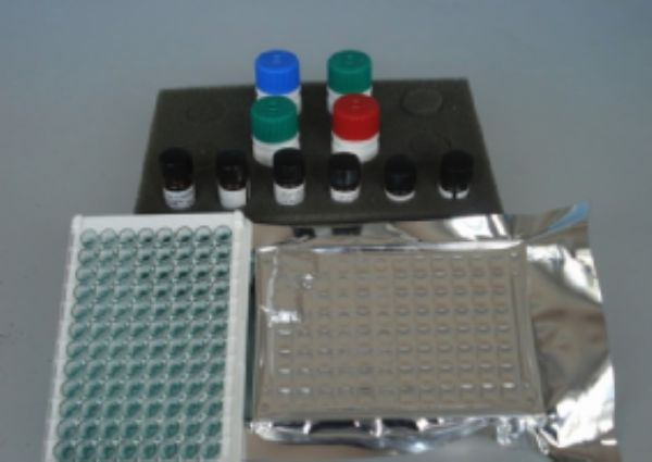 人黑色素瘤标记物(MART/Melan-A)ELISA试剂盒  规格