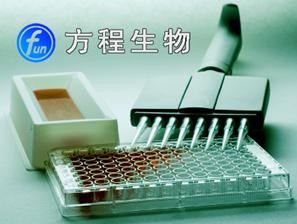 人Human碱性成纤维细胞生长因子受体(bFGFR)ELISA Kit检测价格说明书