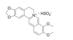硫酸小檗碱,Berberine Sulfate,硫酸氢黄连素