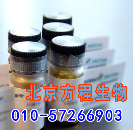 人水通道蛋白8(AQP8)检测/(ELISA)kit试剂盒/免费检测