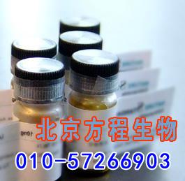 人渗透性糖蛋白(Pgp)检测/(ELISA)kit试剂盒/免费检测