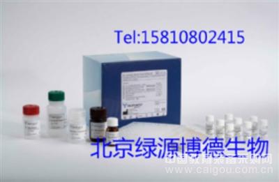 人精氨酸酶Elisa说明书,人Arg进口elisa试剂盒代测